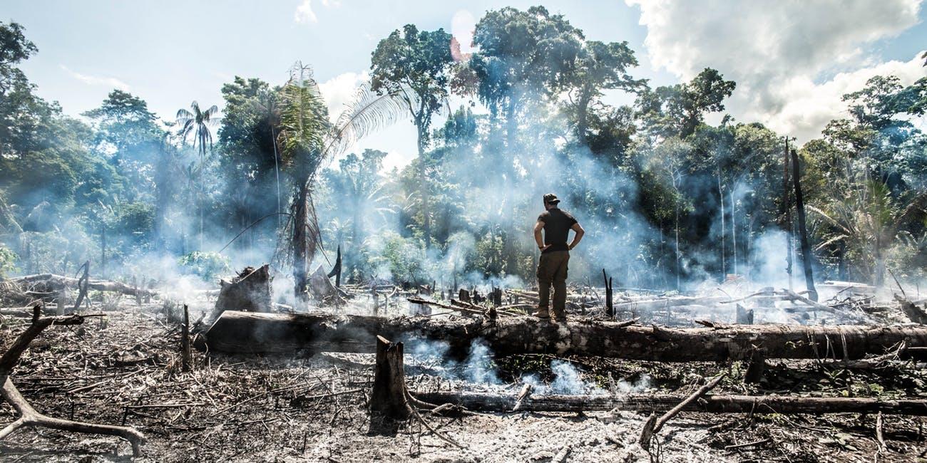 Mẹ thiên nhiên đang kêu cứu Amazon